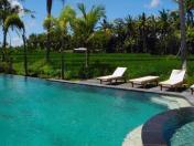 BHANUSWARI主泳池